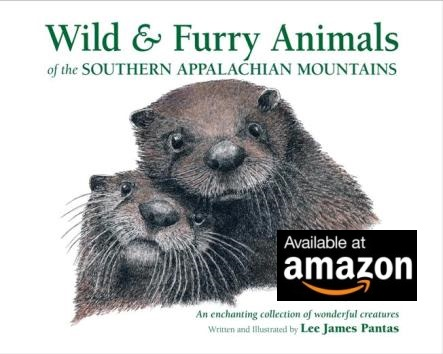 Wild & Furry Animals of the Southern Appalachian Mountains, by Lee James Pantas